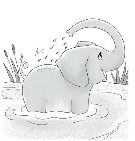 有趣的大象